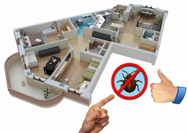 Профилактика клопов в квартире в домашних условиях