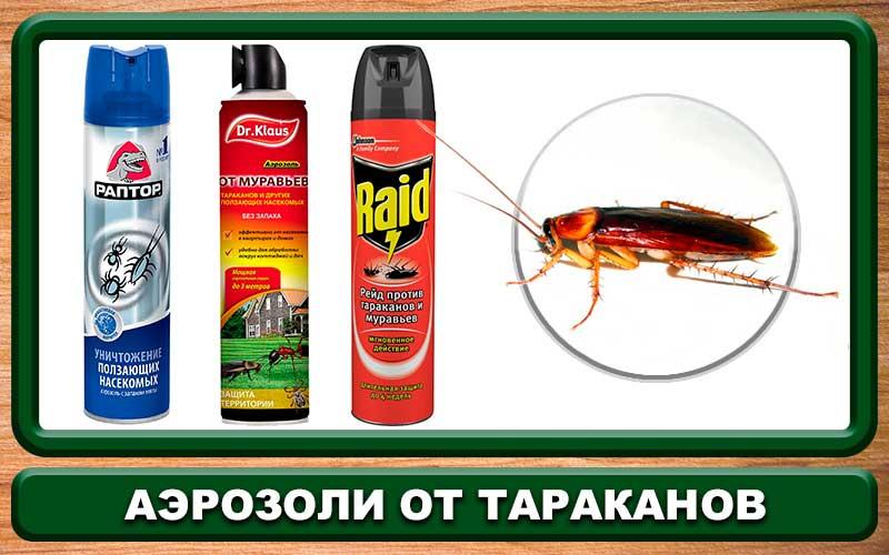 Уничтожение тараканов в квартире лучшие средства от тараканов