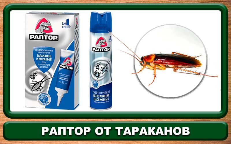 Лучшие средства для уничтожения тараканов