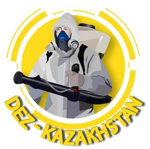 Логотип компании dez-qazaqstan
